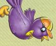 Çırpınan Kuş