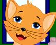 Güzel Kedi Kitty