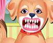 Sevimli Köpek'in Diş Bakımı