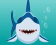 Dişçi Köpek Balığı