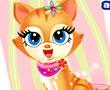 Kedi Güzellik Merkezi