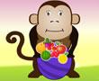 Aç Maymun