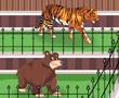 Hayvanat Bahçesi Bakma