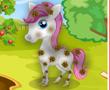 Pretty Pony Gündüz Bakımı