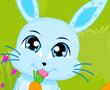 Tavşanın Çılgın Zamanı