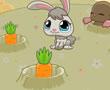 Aç Tavşan