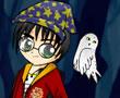 Harry Potter Giydir