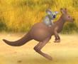 Kanguru ile Sincap