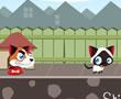 Kedi ve Köpek