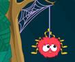 Örümcek Tehlikede