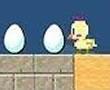 Akıllı Tavuk