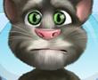 Konuşan Kedi Tom Ayak Dokorunda